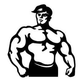 Sporty siłowe